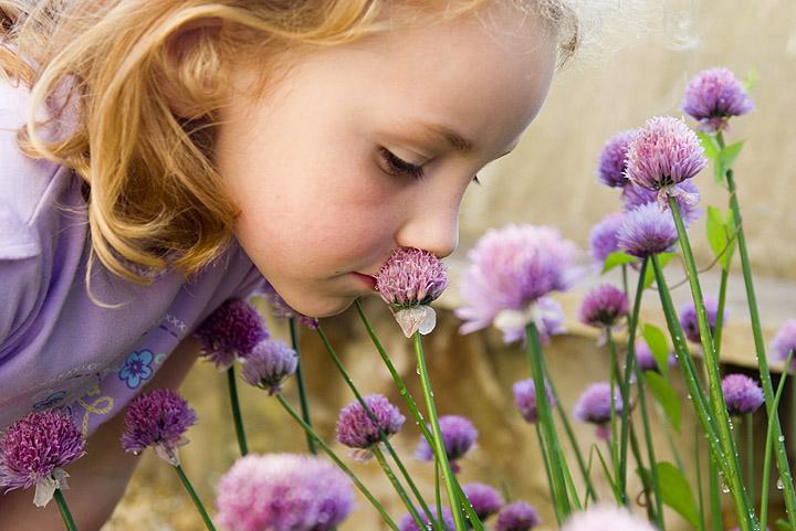 Darryl Sleath - IstockPhoto.com