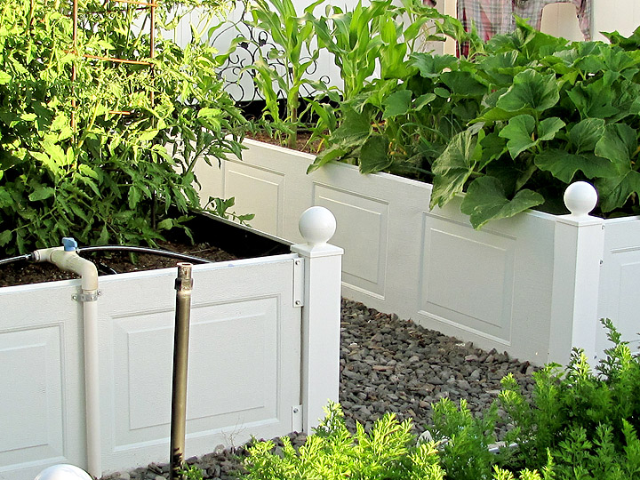 Getting the Most out of Your Raised Garden Boxes