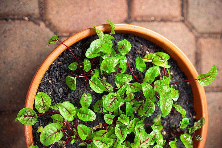 Photo: iStockphoto.com